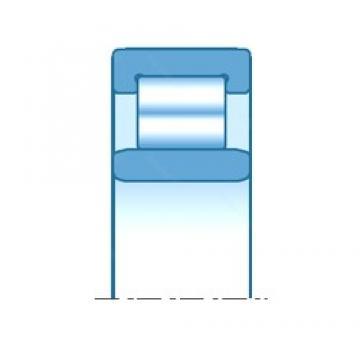 1180,000 mm x 1540,000 mm x 206,000 mm  NTN NU29/1180 Cojinetes de rodillos cilíndricos